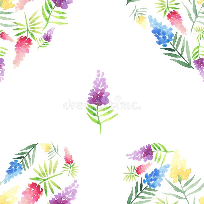 嫩精美逗人喜爱的典雅的可爱的花卉五颜六色的与绿色叶子patte的春天夏天红色,蓝色,紫色和黄色野花 皇族释放例证