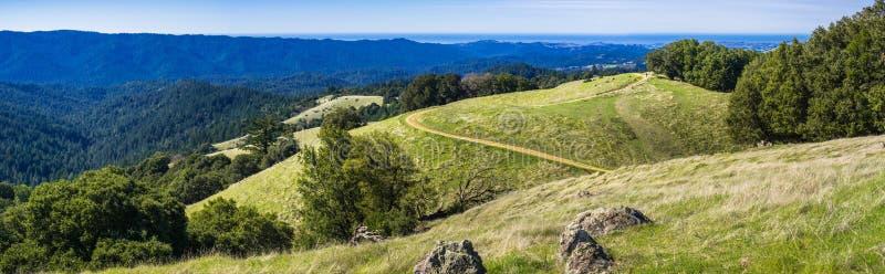嫩绿的青山全景在圣克鲁斯山的 免版税库存照片