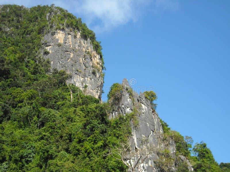 嫩绿的小山全景在东南亚 免版税图库摄影