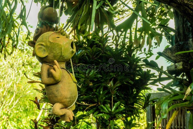 猴子吊瓦器在绳索的 免版税图库摄影