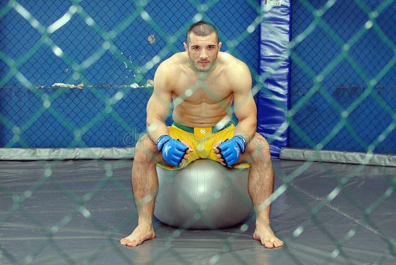 离子帕什库,罗马尼亚UFC战斗机 库存图片