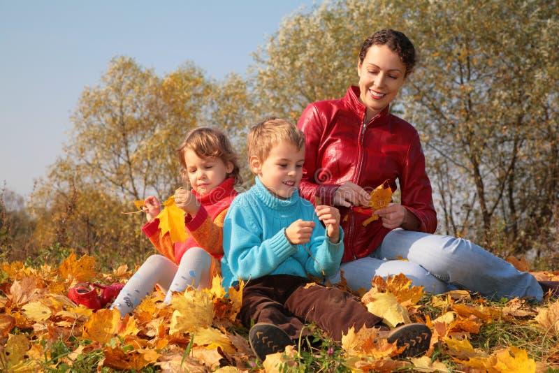 子项划分为的叶子槭树母亲坐 库存照片
