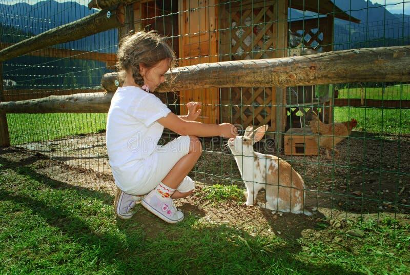 子项和兔子 免版税图库摄影