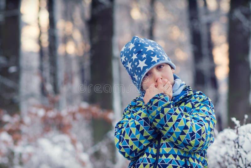 子项在冬天森林里 免版税库存图片