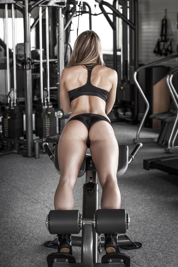 驴子锻炼 免版税库存图片
