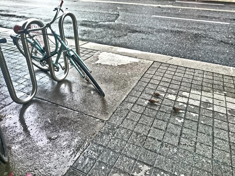 孑然、三只鸟和自行车 免版税库存图片