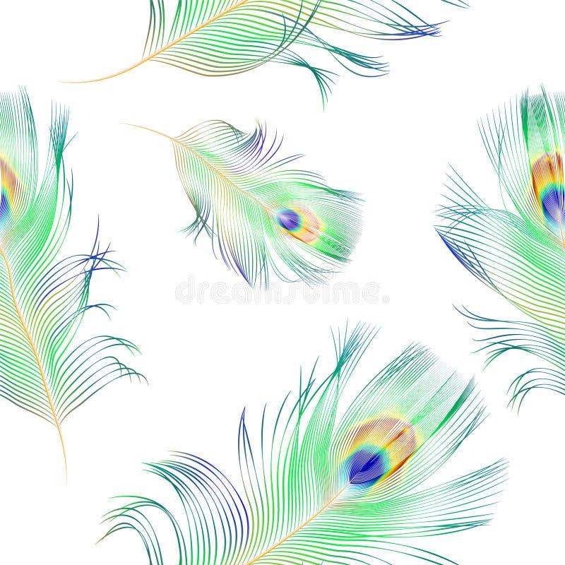 孔雀羽毛-无缝的样式 皇族释放例证