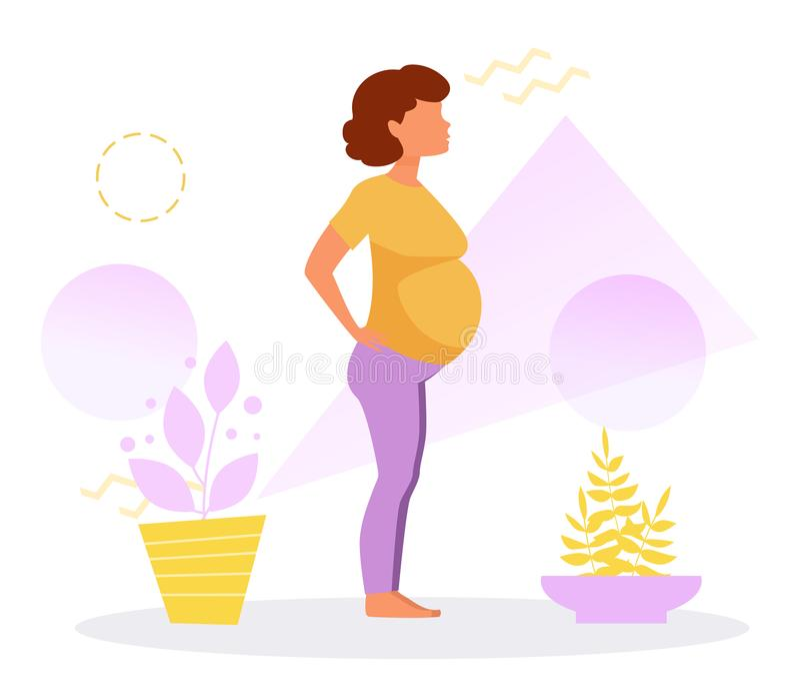 孕妇 9个月 库存例证