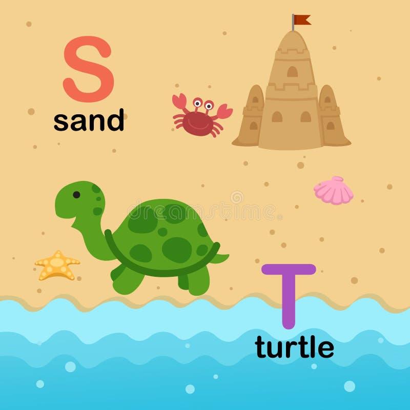 字母表信件S沙子, T乌龟,例证 皇族释放例证