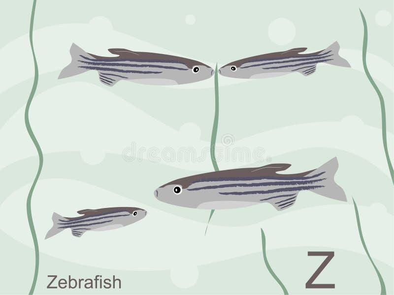 字母表动物看板卡闪光z zebrafish 库存例证