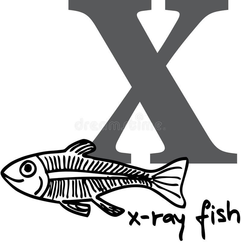 字母表动物鱼发出光线x 库存例证