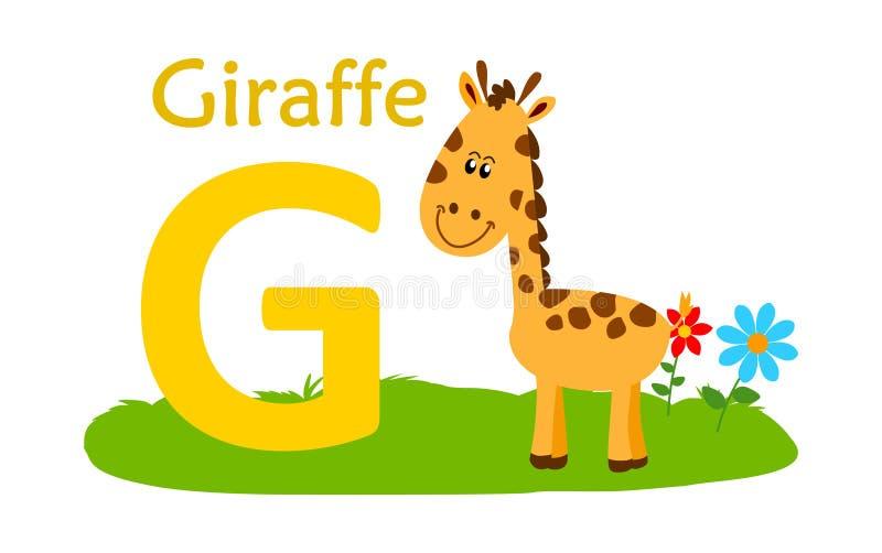 字母表动物g信函 长颈鹿的G 向量例证