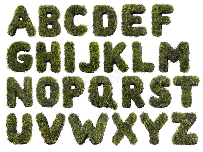 字母表草 库存图片