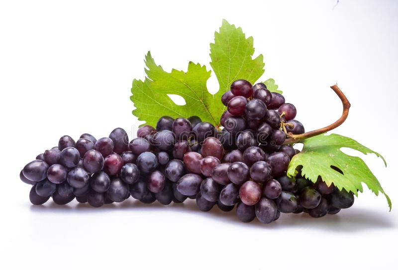 字符串葡萄离开红色 图库摄影