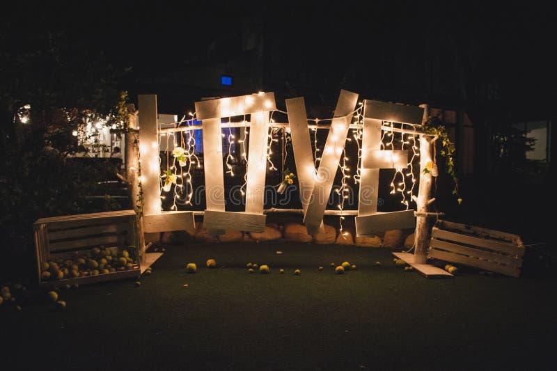 字词与电灯泡的爱标志在晚上 免版税库存照片