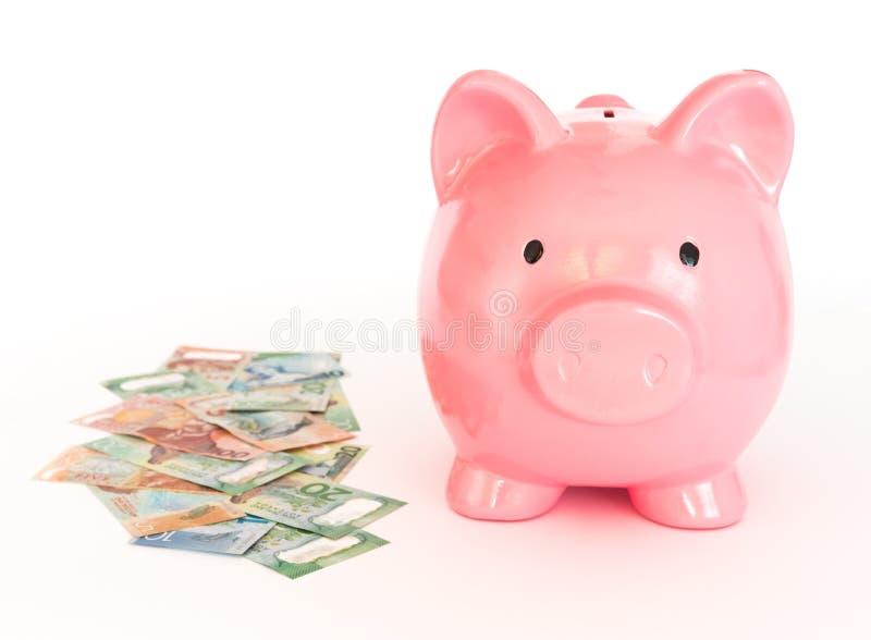 存钱罐和捆绑从新西兰的美元 金钱savin 免版税库存照片