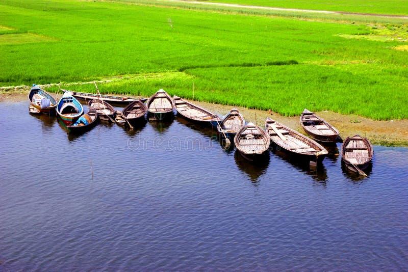 孟加拉国beautiufull 库存图片
