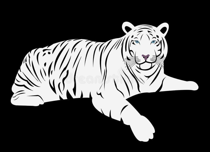 孟加拉白色老虎动画片传染媒介 向量例证