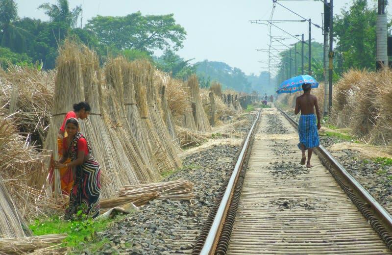 孟加拉的面孔 免版税库存照片