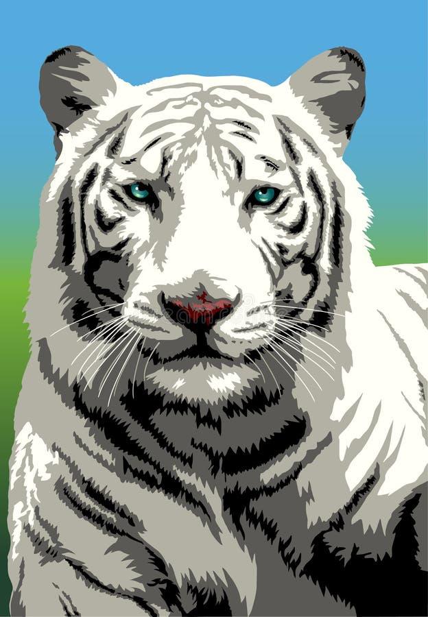 孟加拉老虎白色 库存例证
