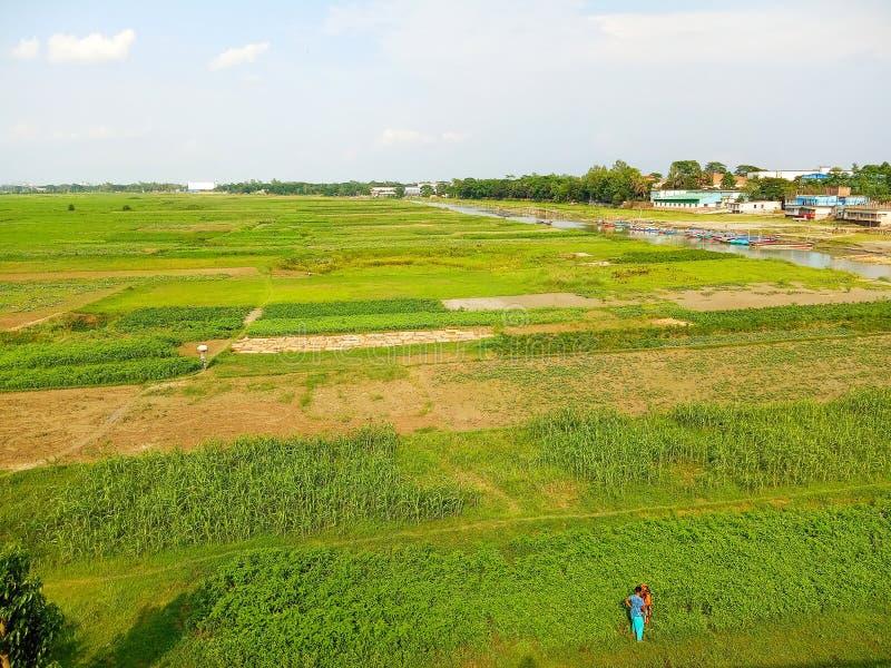 孟加拉Munshigonj,Betka联合粮田 免版税库存图片
