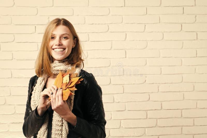 季节和秋天假日 库存照片