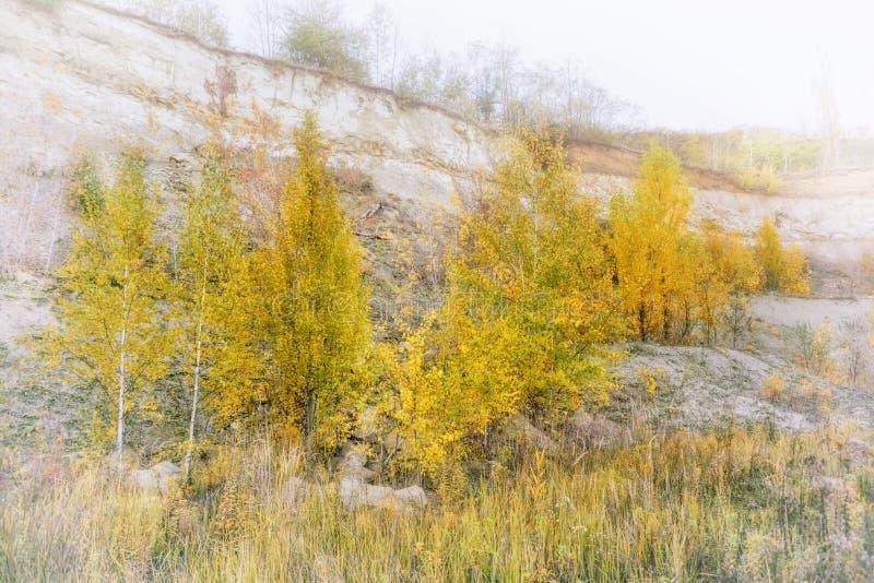 季节时间向量年 秋天 免版税库存照片