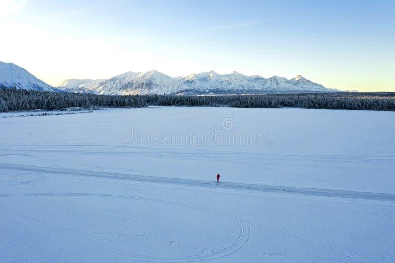 孤独在一个冻湖 免版税库存图片