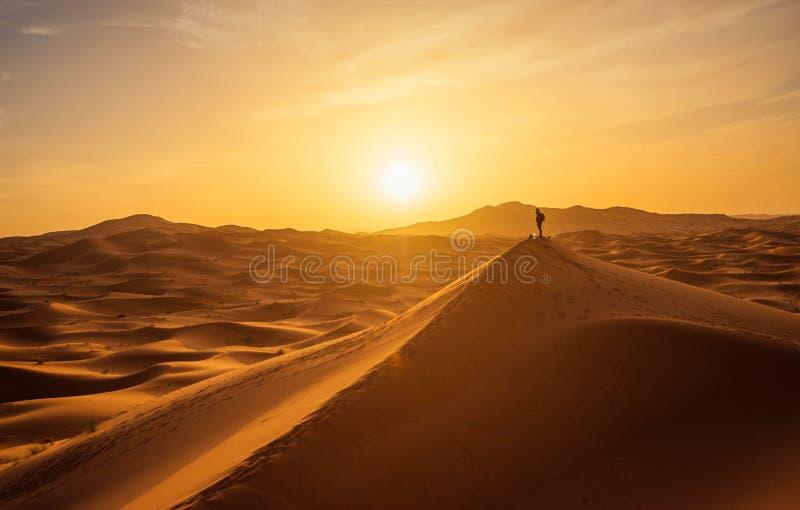 孤独的人在撒哈拉大沙漠 免版税库存照片