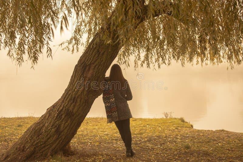 孤独的妇女有休息在树下在水附近在一有雾的秋天天 孤独的妇女在秋天的享受自然风景 免版税库存图片