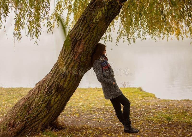 孤独的妇女有休息在树下在水附近在一有雾的秋天天 免版税库存图片