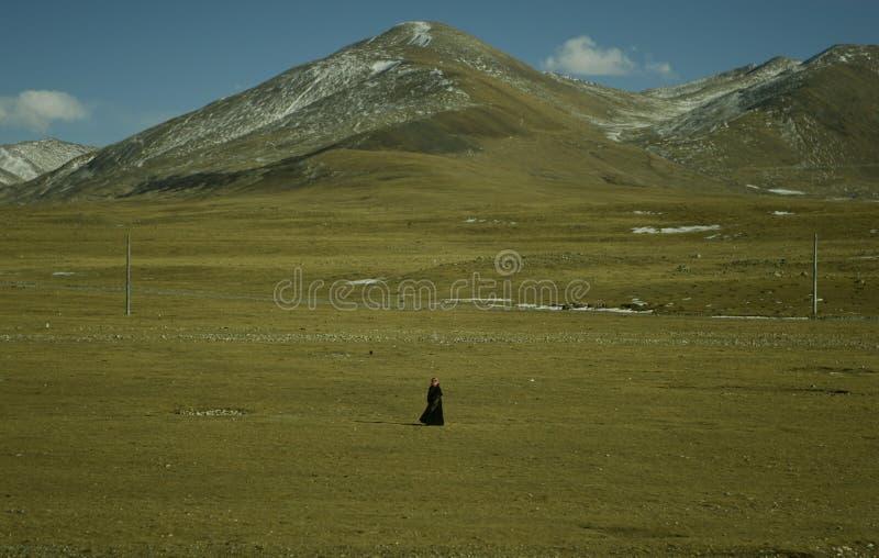 孤独的香客西藏 免版税图库摄影