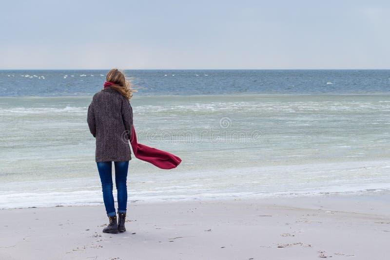 孤立哀伤的美丽的女孩走沿冻海的岸的在一冷的天,风疹,与一条红色围巾的鸡在脖子 库存图片