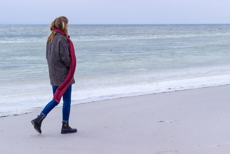孤立哀伤的美丽的女孩走沿冻海的岸的在一冷的天,风疹,与一条红色围巾的鸡在脖子 图库摄影