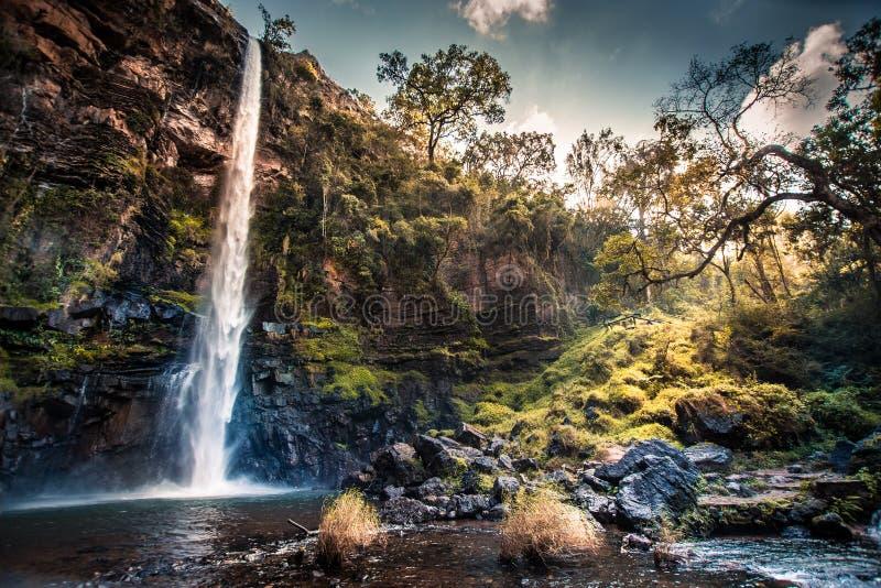 孤立小河瀑布在普马兰加省,南非,有阳光的 库存照片