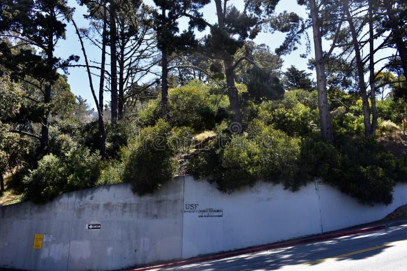 孤立山学院孤立山校园, 11 库存照片
