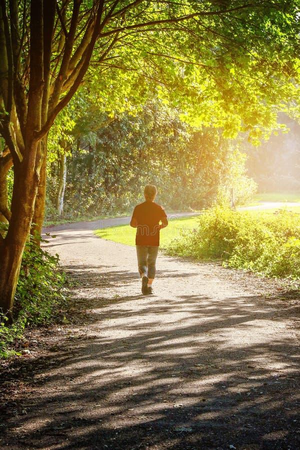 孤立慢跑者在一个公园在一个秋天早晨 免版税库存照片