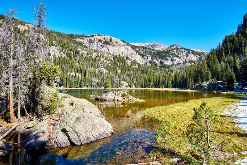 孤立Pine湖,落矶山,科罗拉多,美国 免版税图库摄影