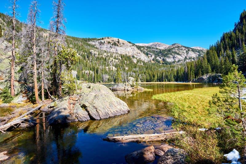 孤立Pine湖,落矶山,科罗拉多,美国 免版税库存照片