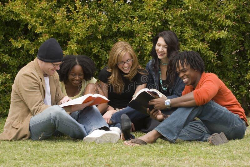 学习不同的人的读和 库存图片