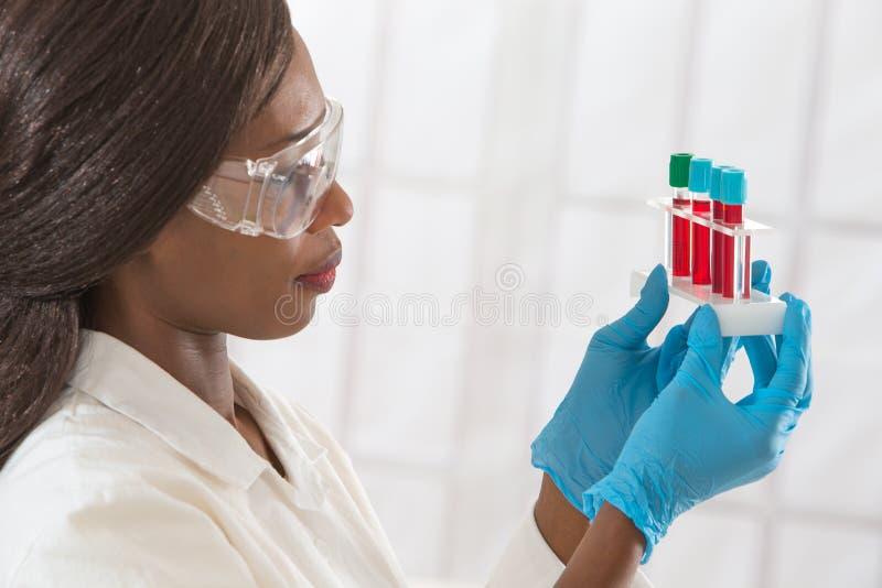 学习分析的女性实验员血样 免版税库存照片