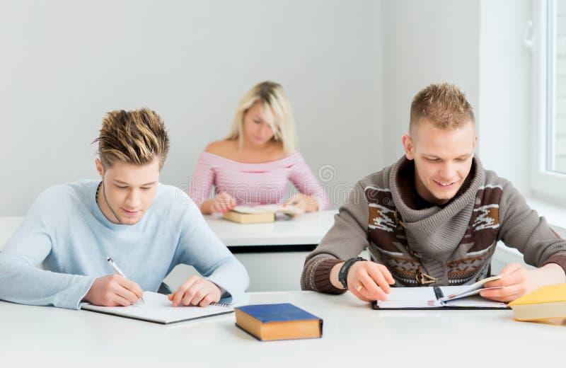 学习在教训的小组少年学生 库存图片