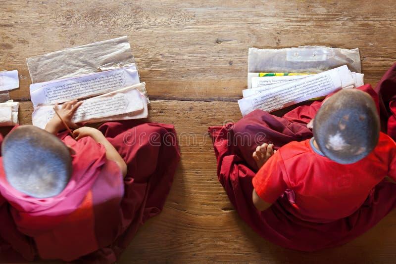 学习年轻的修士, Chimi Lhakhang修道院 免版税库存图片