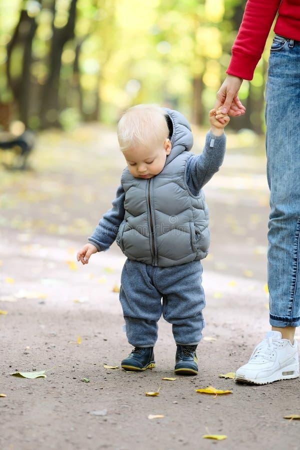 学会一个岁的男婴在秋天公园走与他的母亲 免版税库存照片