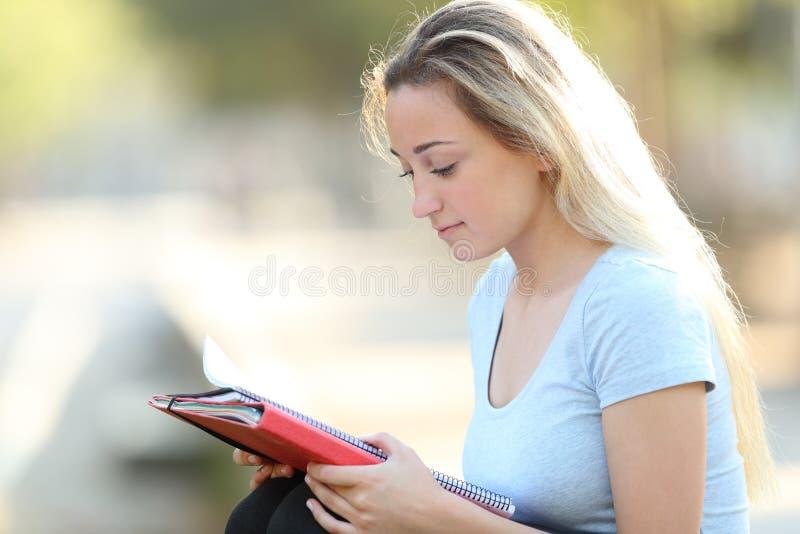 学会严肃的学生读笔记户外 免版税库存照片