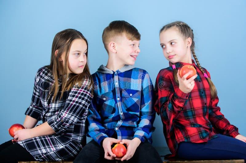 学校快餐概念 传达和吃苹果的小组快乐的少年   库存照片