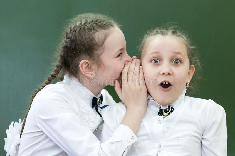 学校朋友告诉在他的耳朵的一个秘密 库存照片