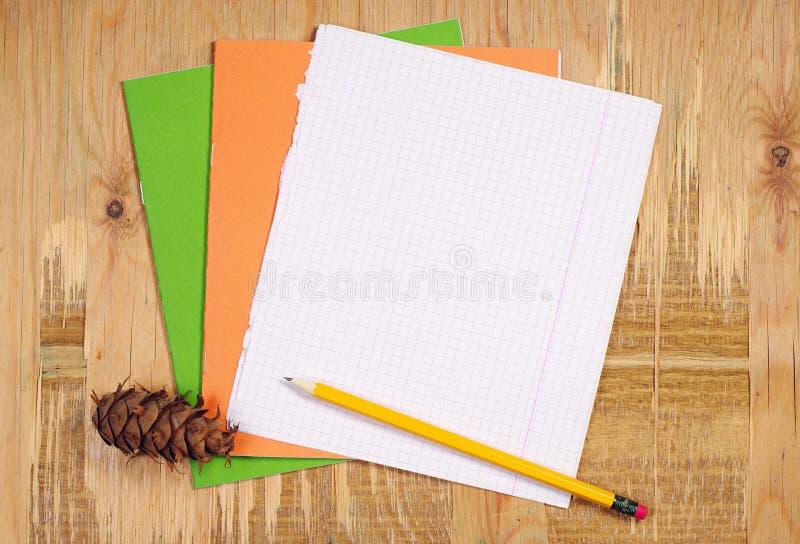 学校笔记本、铅笔和杉木锥体 库存照片