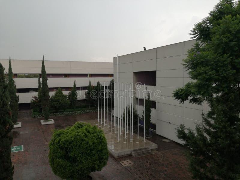 学校IPN ESCON 库存图片