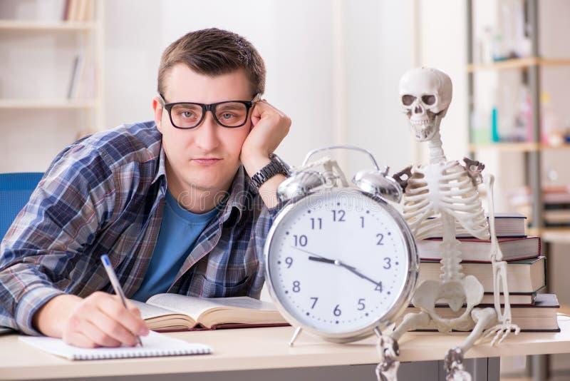 学生和骨骼为学校检查做准备 免版税库存照片